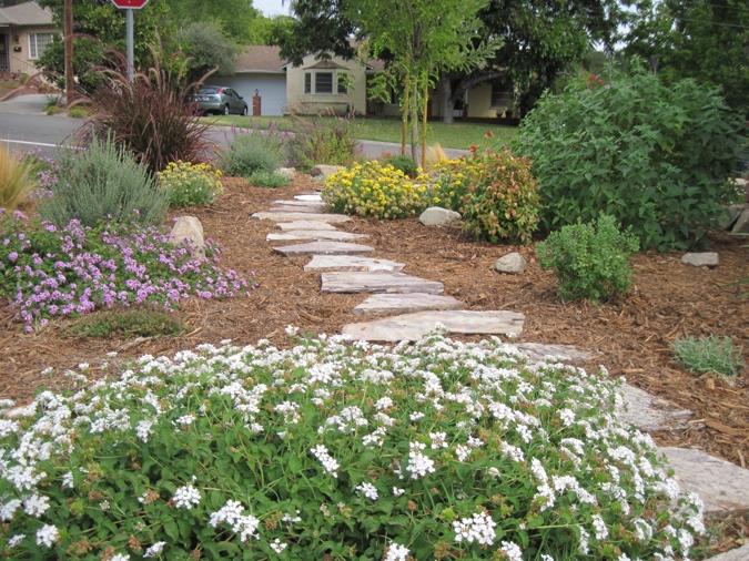blog turiace landscaping